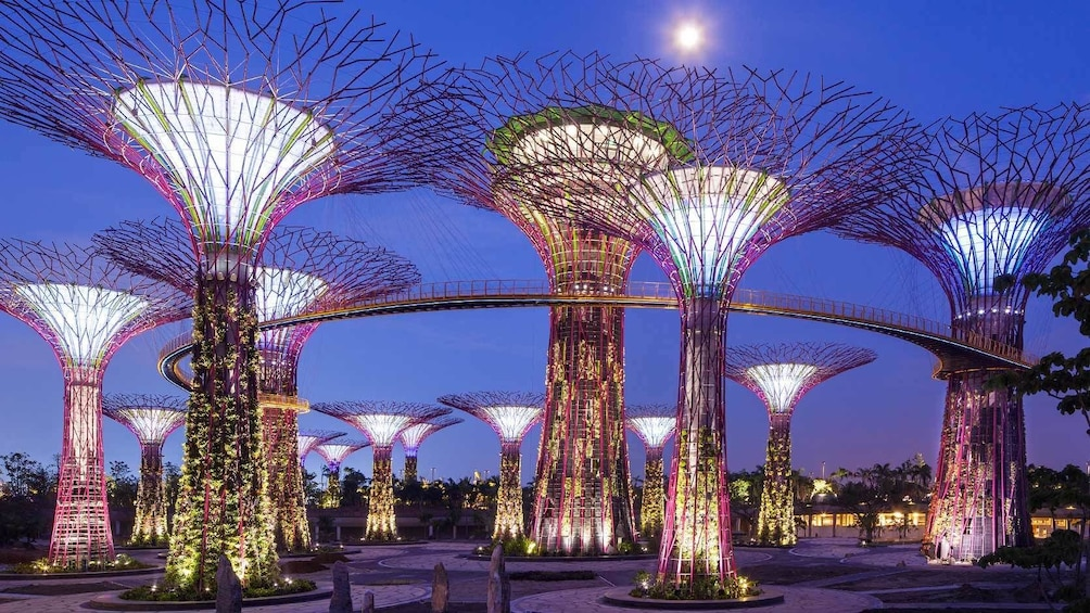 Show item 1 of 10. Gardens by the Bay + OCBC Skyway