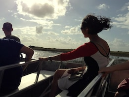 Afternoon Everglades Tour with Airboat Ride in a Luxury Bus