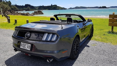 Mustang convertible on the coast of Bay of Islands in New Zealand