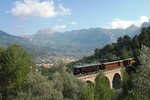 Mallorca full day tour by Bus, Boat, Train and Tram