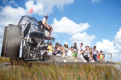 Airboat tour in Miami