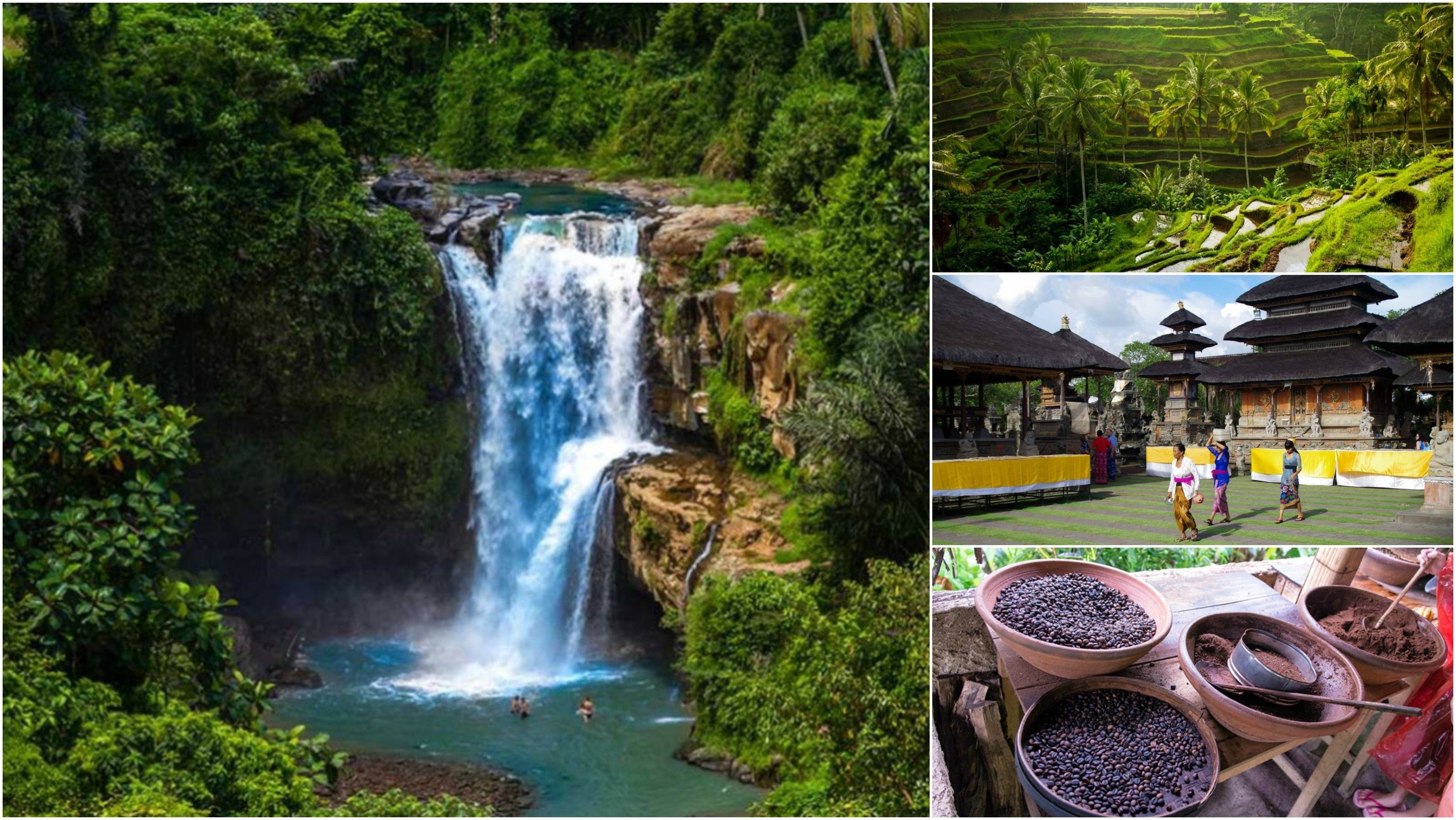 Private Tour: The Gorgeous of Bali