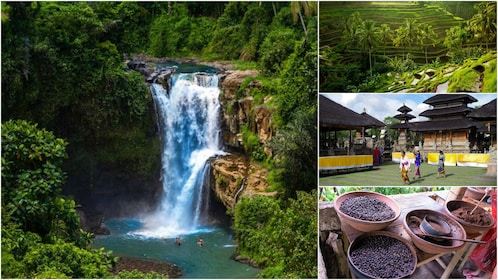Collage of images in Bali: a waterfall, spices, terrace fields and a village