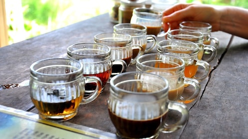 Coffee and tea samples in Bali