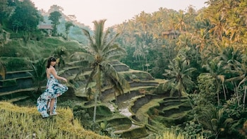 Private Bali Tour All About Ubud