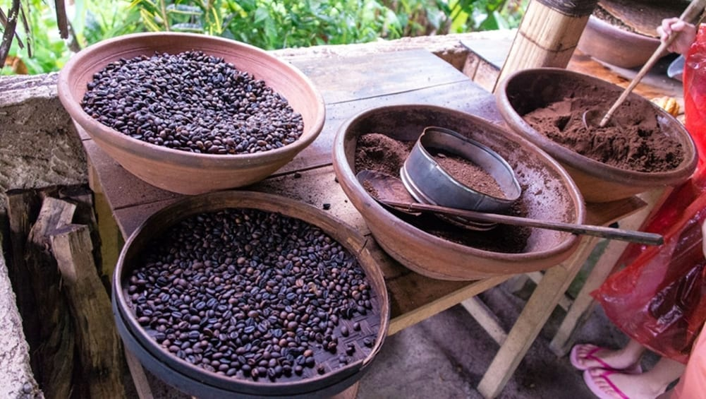 Show item 2 of 9. Coffee beans at a plantation in Bali
