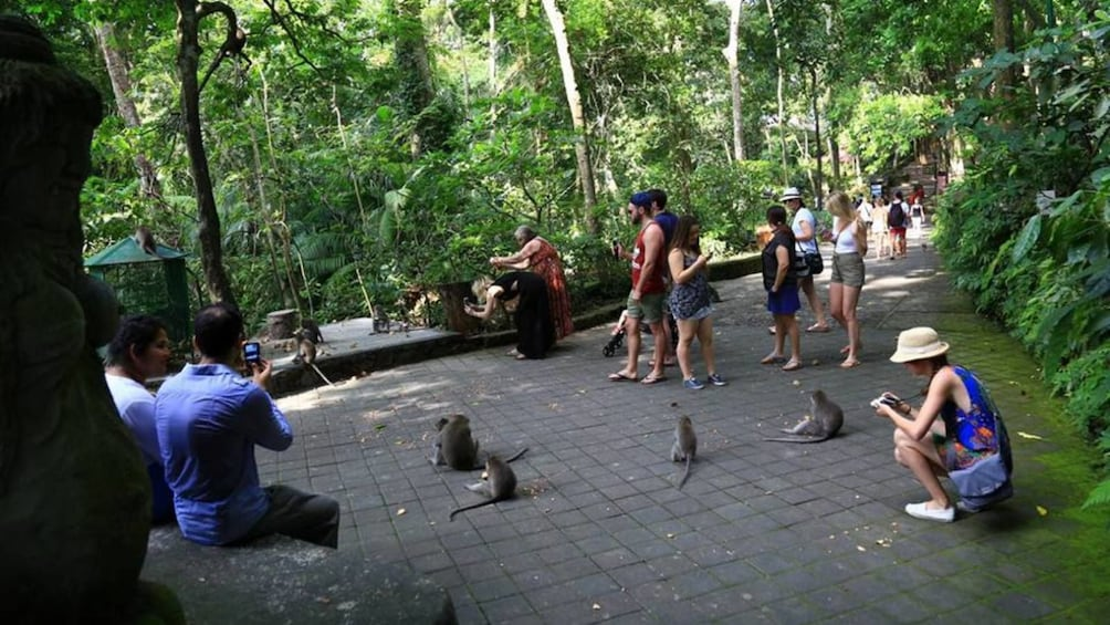 Show item 3 of 9. Best Ubud Tour with Jungle Swing