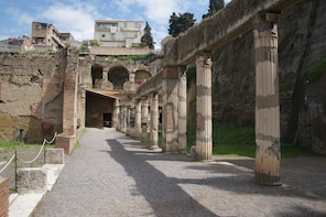 Pompeii & Herculaneum - Day Trip from Naples