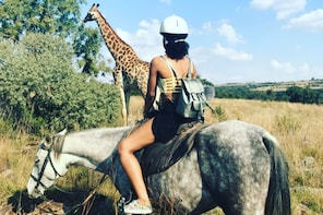 Horseback RIding and Safari