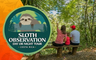 Sloth Observation Tour – Day or Night
