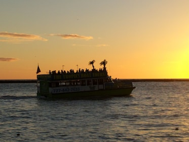 Cruise at sunset in Florida
