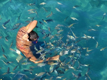 Man swimming with fish in Angra dos Reis Archipelago