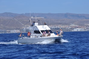 6-Hour Sport Fishing at Puerto Rico in Gran Canaria
