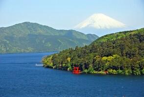 Mt Fuji and Hakone 1-Day Tour