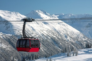 Whistler 1-Day Sightseeing Tour from Vancouver