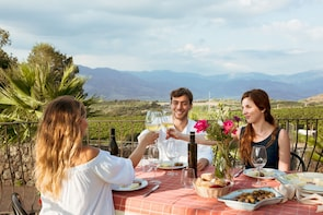 Etna Countryside Food & Wine Tour: small group