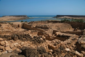 Full Day for East Jewels with Wadi Darbat: Salalah Tours