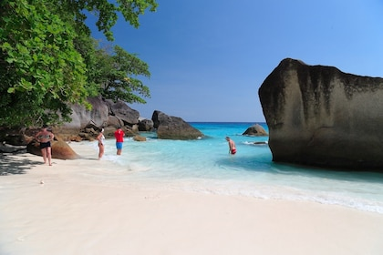 Beach on Similan Islands in Thailand