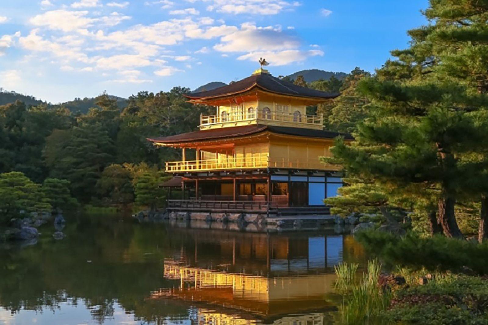 Kyoto Arashiyama and Nara 1 Day Bus Tour