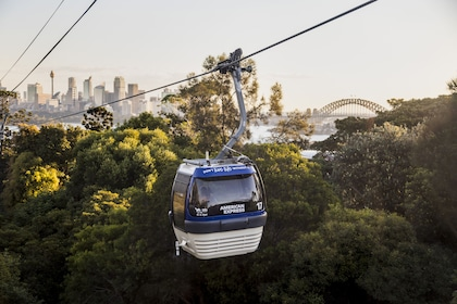 Aerial tram at Taronga Zoo in Sydney