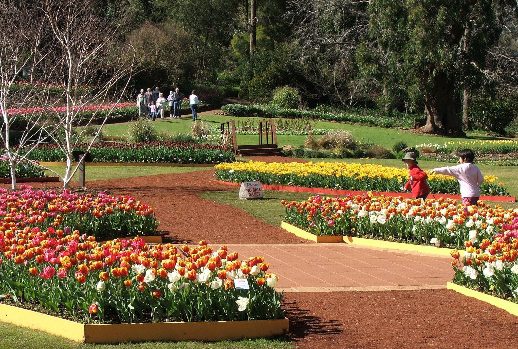 Araluen Botanic Park, Wave Rock, and York full day tour