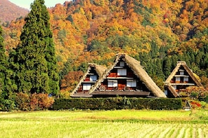 Takayama and Shirakawago 1 Day Bus Tour from Nagoya