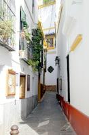 Santa Cruz Private Tour and Flamenco