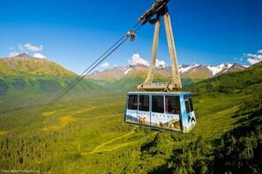 Alaska Crafted Tour and Cruise Transfer- Port of Seward