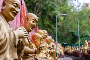 Explore Hong Kong 10,000 Buddhas & Tai Po in just 4 Hours!