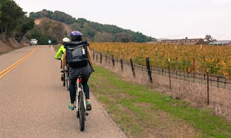 Wine Country by Bike