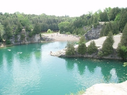 Day Trip to the Elora Gorge from Toronto