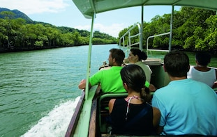 2 Day Great Barrier Reef & Rainforest Tour - Starter Pak
