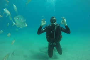 Scuba-Diving Experience for Beginners in Puerto Mogán beach
