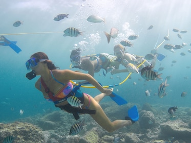Group exploring the reefs on a snuba adventure at Xcaret Park in Playa del Carmen
