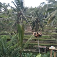 Full Day Exploring Ubud Art and Culture Tour