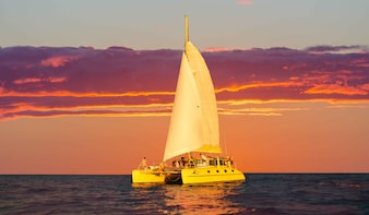 Catered Sunset Sail on board the iconic Yellow Catamaran