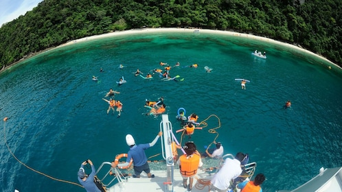 Tour group snorkeling in Phi Phi Islands