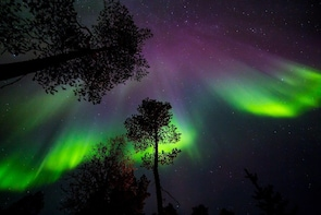 Rovaniemi: Hunt the Northern Lights With Lappish BBQ
