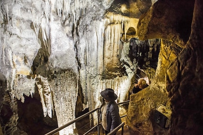 The Chifley Cave Tour - A Light in the Darkness!