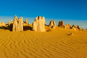 Pinnacles Desert Private Tour