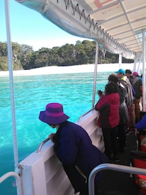 Boating passengers looking at the water in Jervis Bay