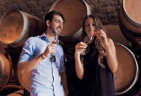 Tuscany Chianti Wine & Olive Oil Trail