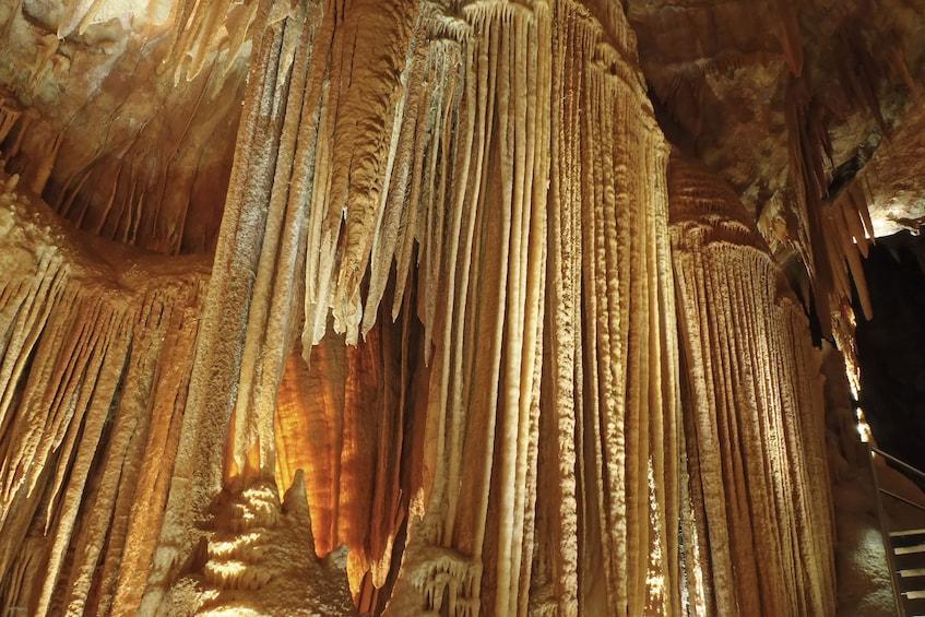 Cargar ítem 1 de 8. Extended Orient Cave Tour - for Night Owls