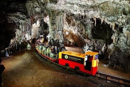 Train ride tour through a cave