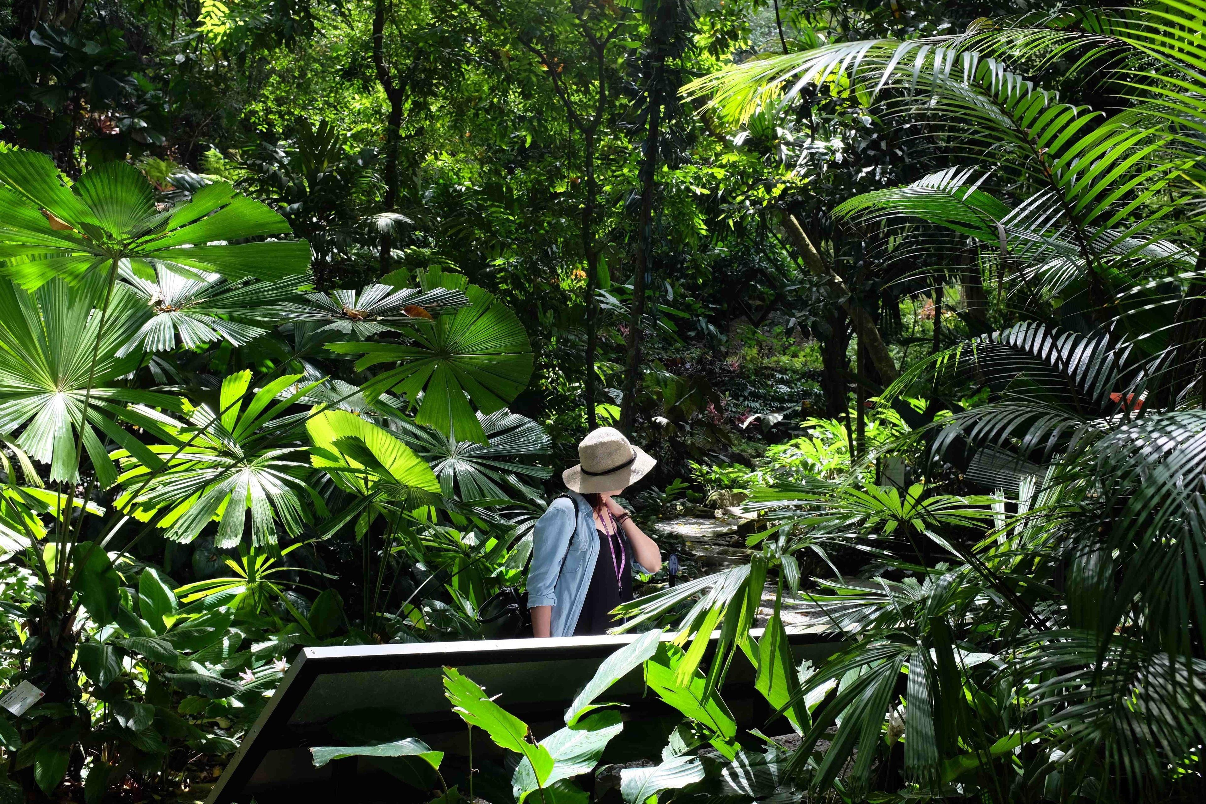 Tropical Spice Garden Self Guided Audio Garden Tour