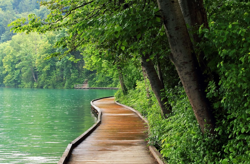 Show item 3 of 6. Lake Bled