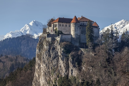 Bled Castle in Slovenia