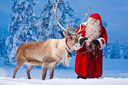 santa-and-reindeer-rovaniemi_14.jpg