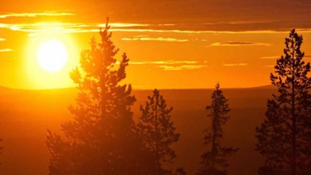 Show item 5 of 10. Finnish forest lake in Rovaniemi at sunset