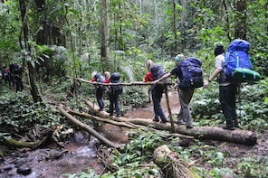 3-day Trekking in Nam Ha National Protected Area
